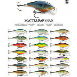 Scatter Rap Shad