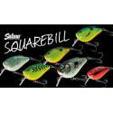 Squarebill Floating